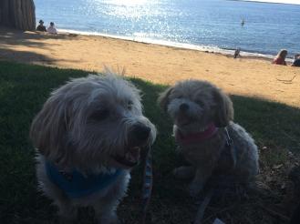 Chillin' beachside!
